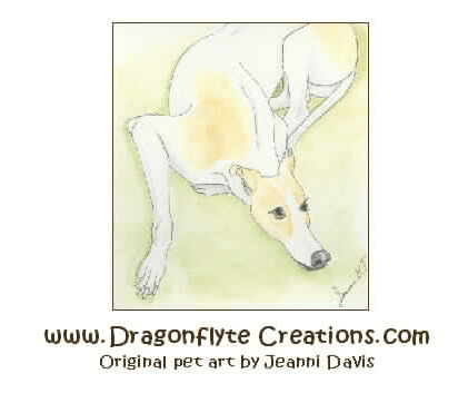 Dragonflyte Creations